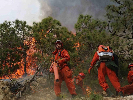 Forest-fire-emergency-communications.jpg